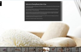 Raving Beauty Website Design Image 1