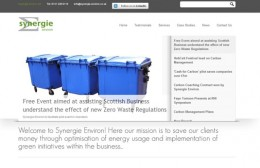 Synergie Environ Website Design Image 1