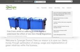 Synergie Environ Website Design Image 1