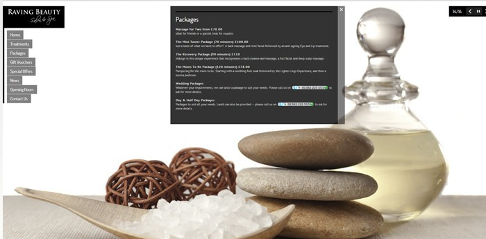 Raving Beauty Website Design Image 3