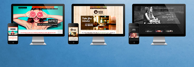 responsive design by dmc web