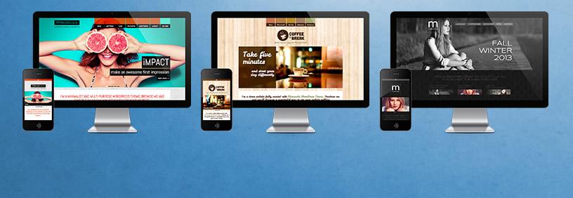 responsive design by dmc web